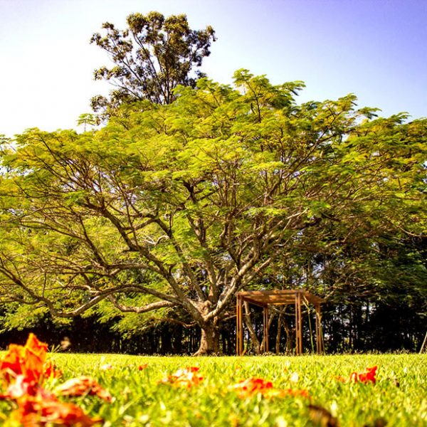 Ambiente ao ar livre para seu evento ficar mais próximo da natureza